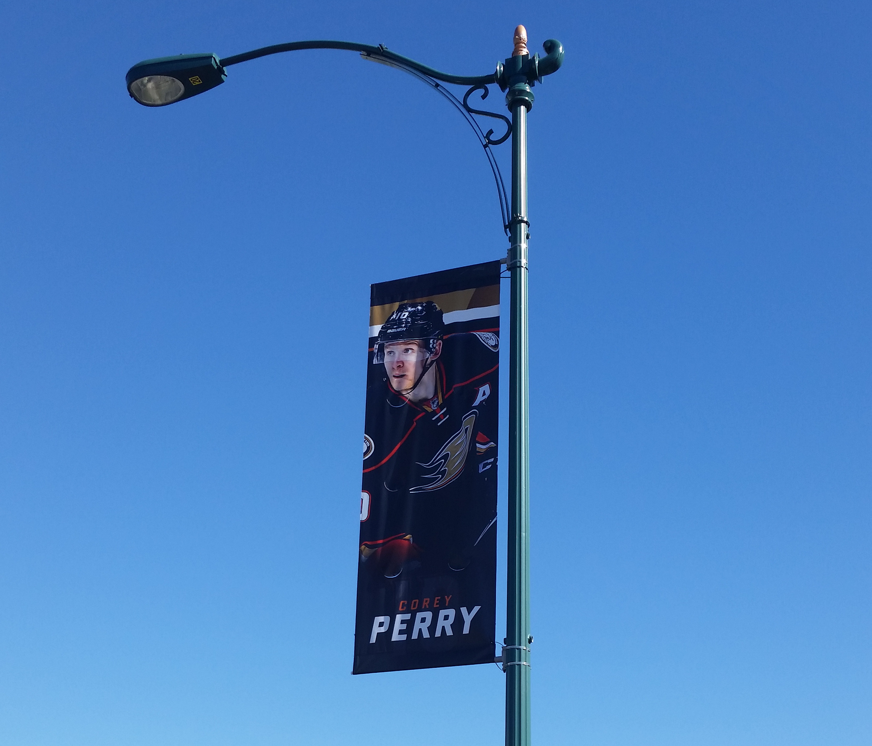Ducks Banner Light Pole